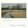 Syndromeda - A Day In The Fields