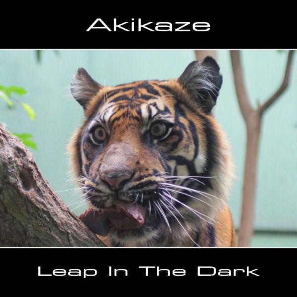 Akikaze - Conflicting Emotions